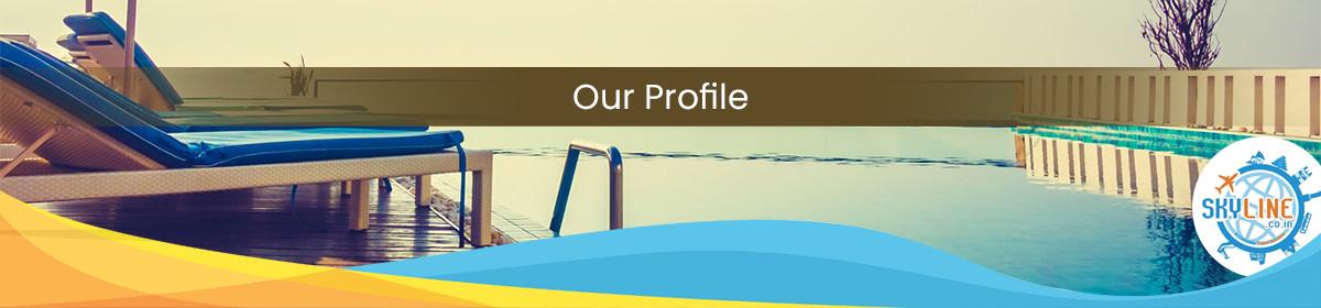 Our Profile